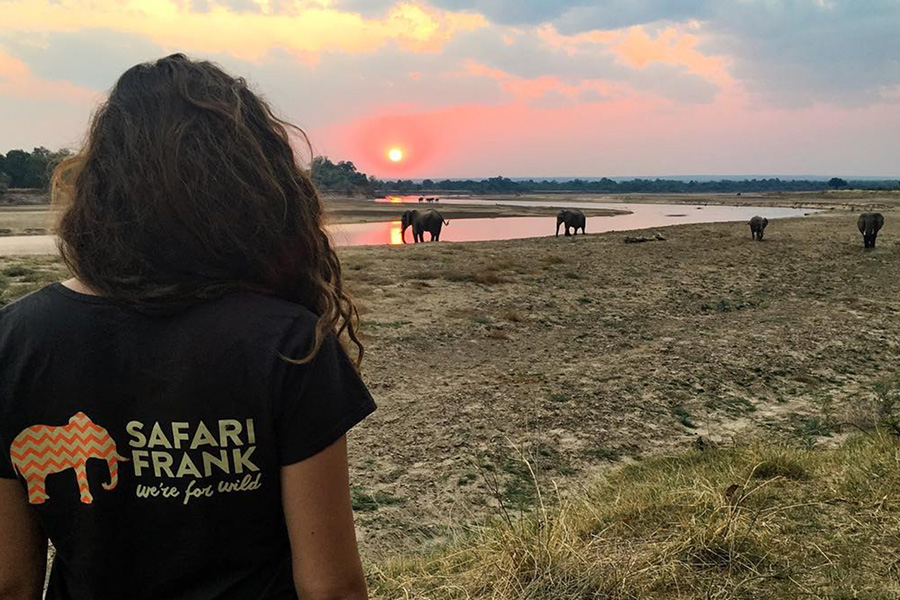 Safari Frank Branding on back of T shirt exploring in Africa