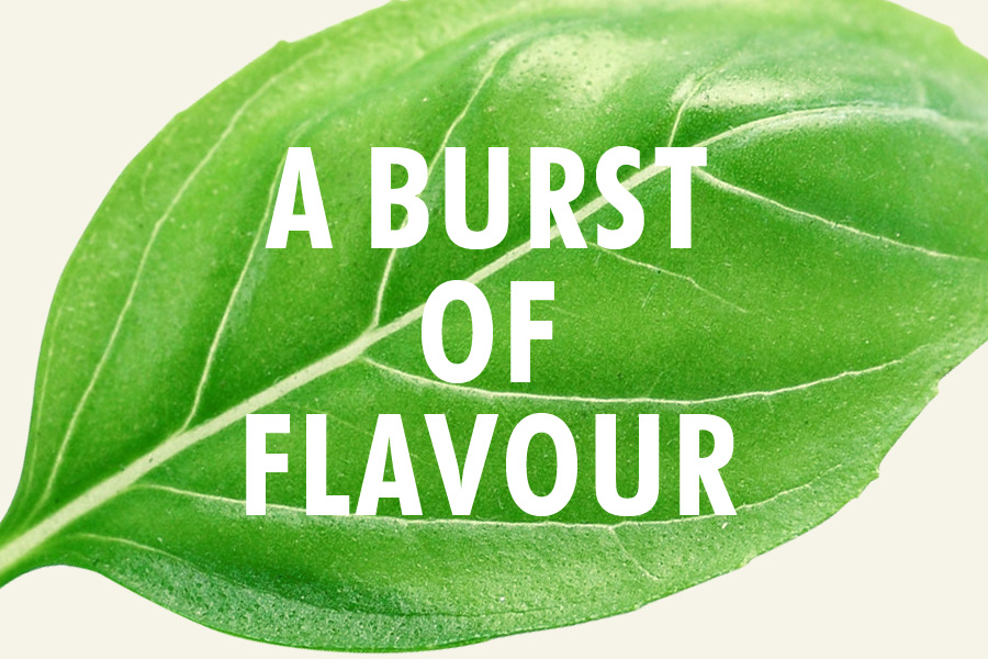 Sirena Branding - A Burst of Flavour